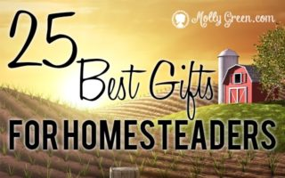 Gifts For Homesteaders, The 25 BEST Gifts For ANY Homestead